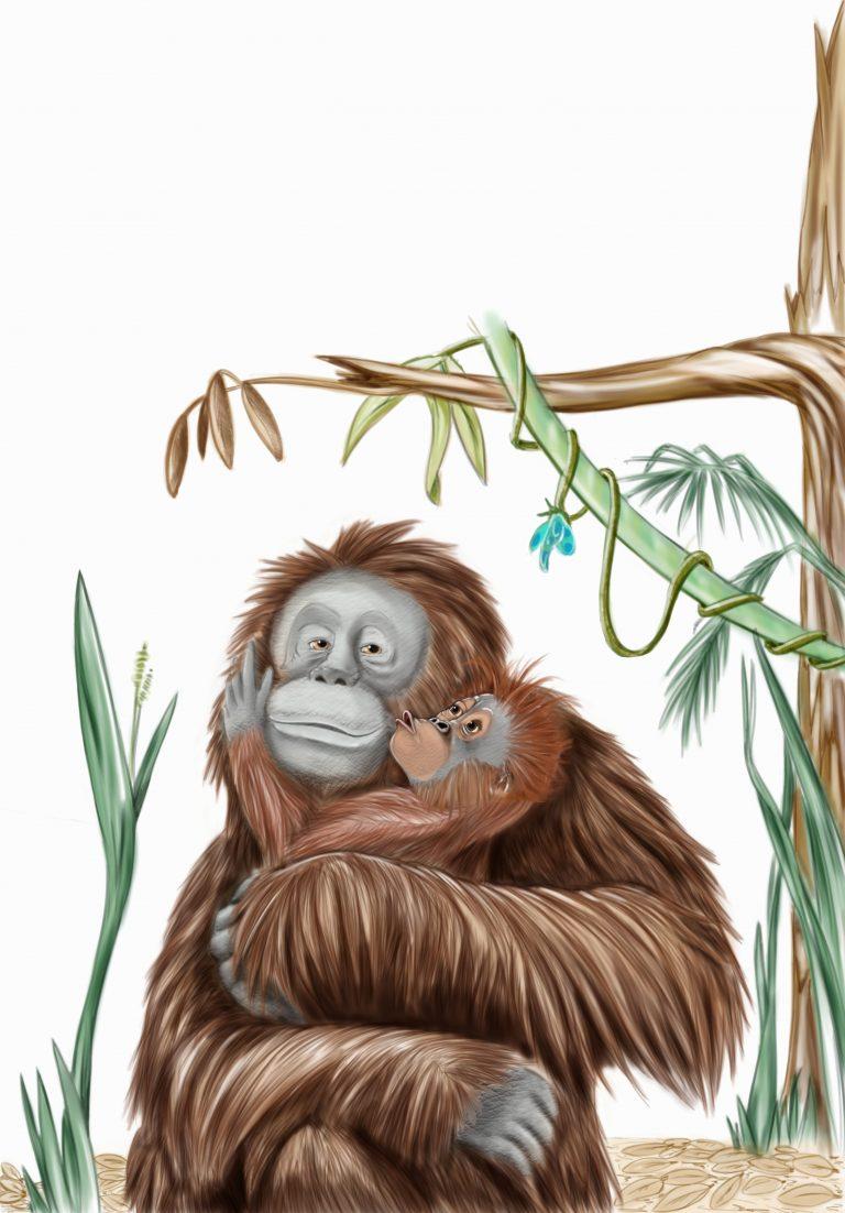 Mother orangutan