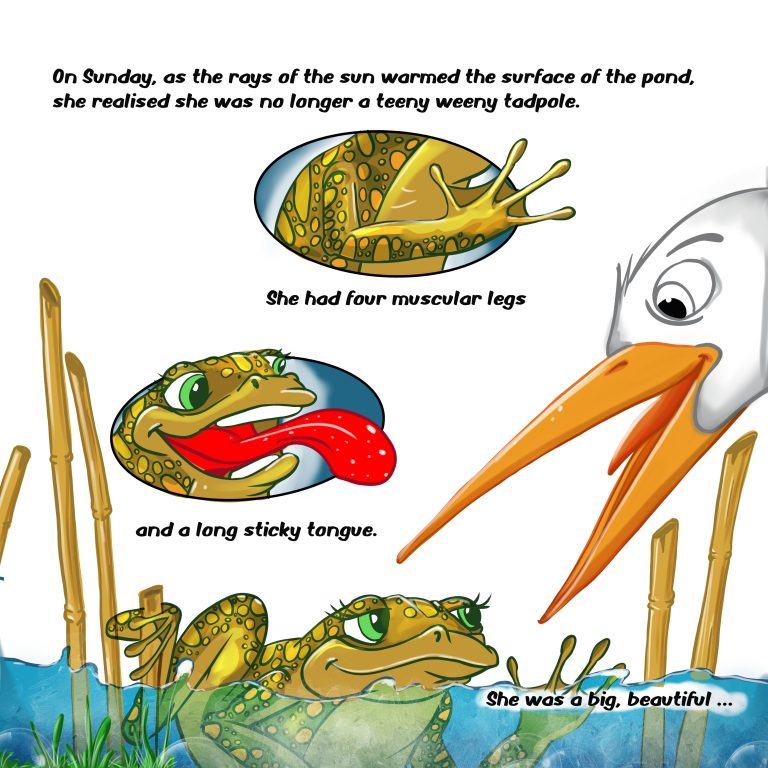The Tadpole That Ate too Much pg29